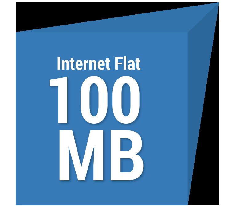 Internet Flat 100 MB