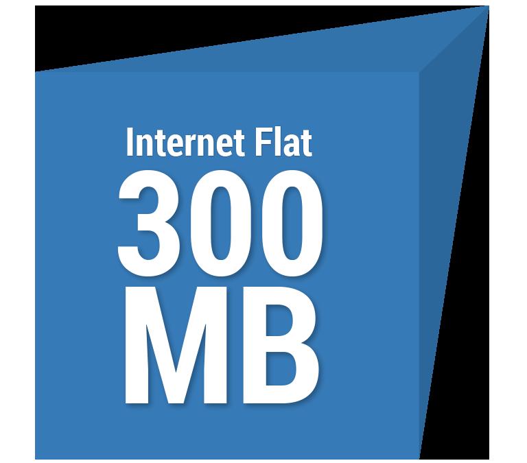 Internet Flat 300 MB